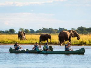 Safari en canoa en Mana Pools