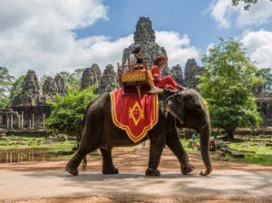 Camboya - Paseo en elefante al atardecer