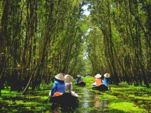 Navegar por la bahía de Halong o el delta del Mekong