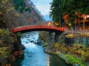 nikko-bridge