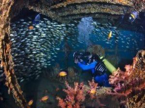 Buceo Oman